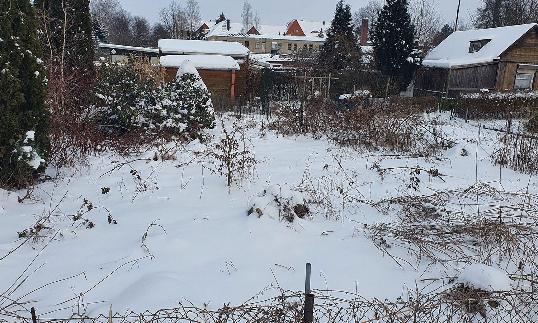 Garten365